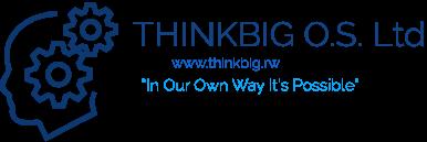 THINKBIG ONLINE SERVICES
